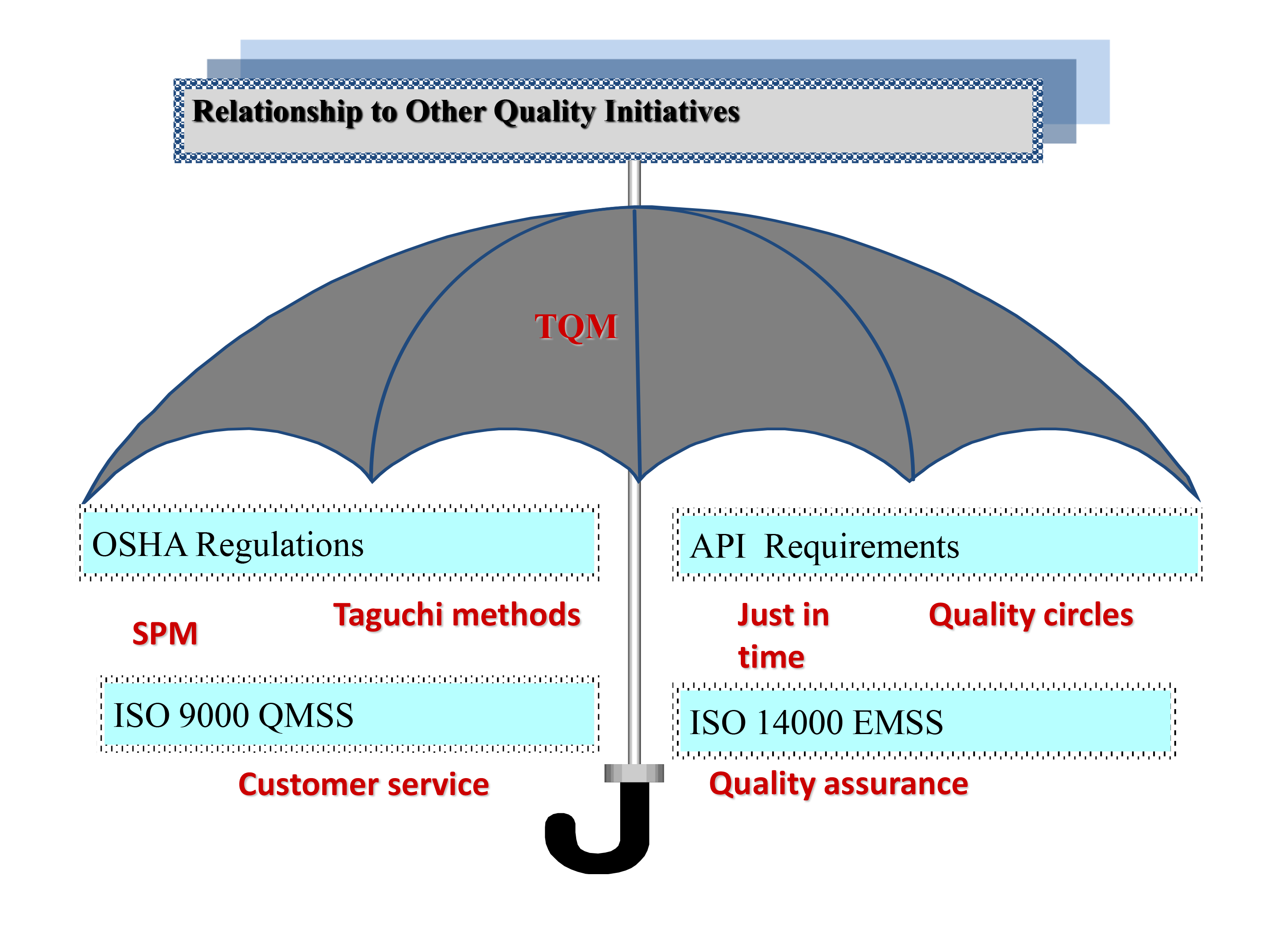 Relationship to Other Quality Initiatives